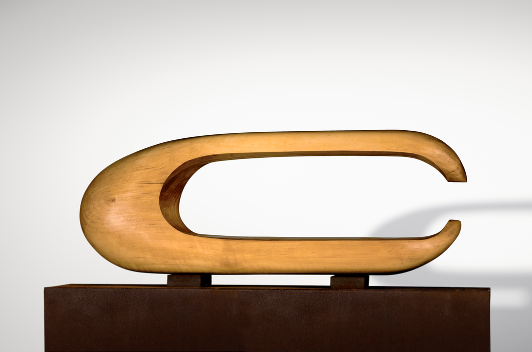 Contemporary abstraction sculpture by Jorge Palacios
